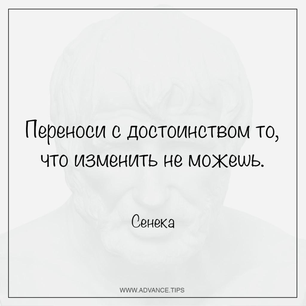 Переноси с достоинством то, что изменить не можешь.