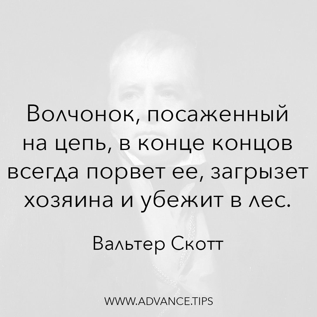Волчонок, посаженный на цепь, в конце концов всегда порвет ее, загрызет хозяина и убежит в лес. - Вальтер Скотт - 10 Мудрых Мыслей.