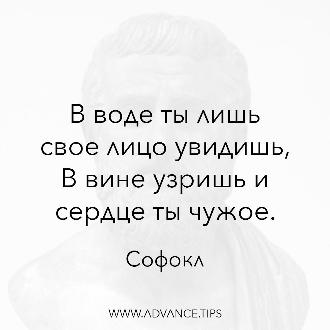 В воде ты лишь свое лицо увидишь, В вине узришь и сердце ты чужое. - Софокл - 10 Мудрых Мыслей.