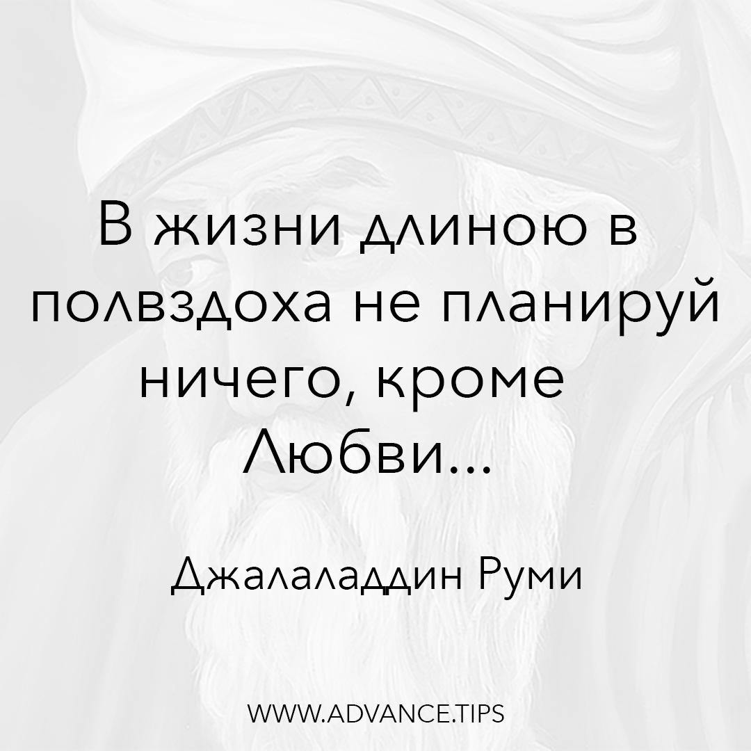 В жизни длиною в полвздоха не планируй ничего, кроме Любви... - Джалаладдин Руми - 10 Мудрых Мыслей.
