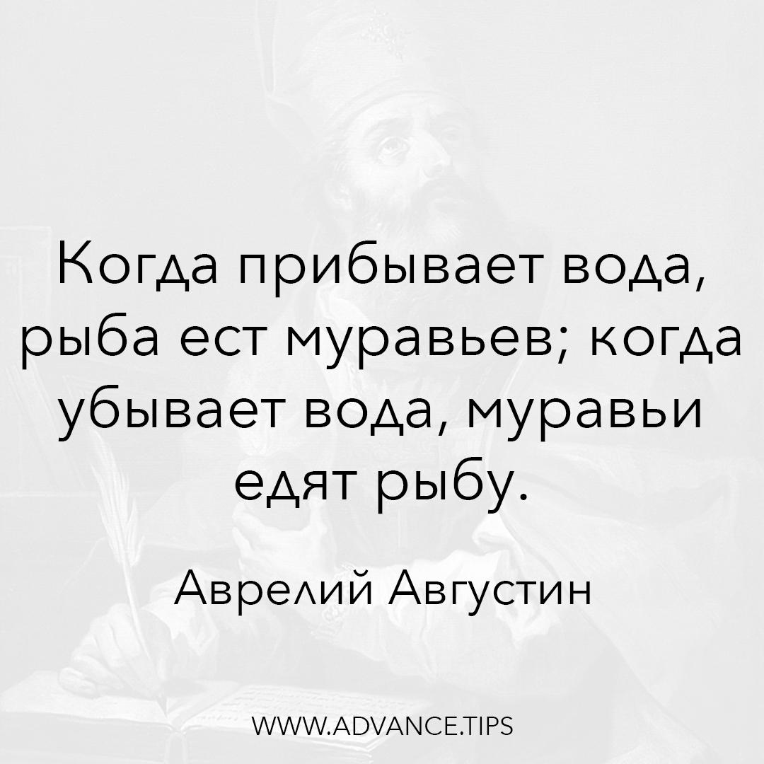 Когда прибывает вода, рыба ест муравьев; когда убывает вода, муравьи едят рыбу. - Аврелий Августин - 10 Мудрых Мыслей.