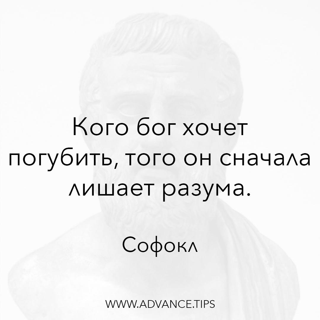Кого бог хочет погубить, того он сначала лишает разума. - Софокл - 10 Мудрых Мыслей.