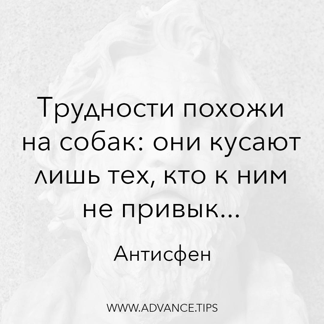 Трудности похожи на собак: они кусают лишь тех, кто к ним не привык... - Антисфен - 10 Мудрых Мыслей.