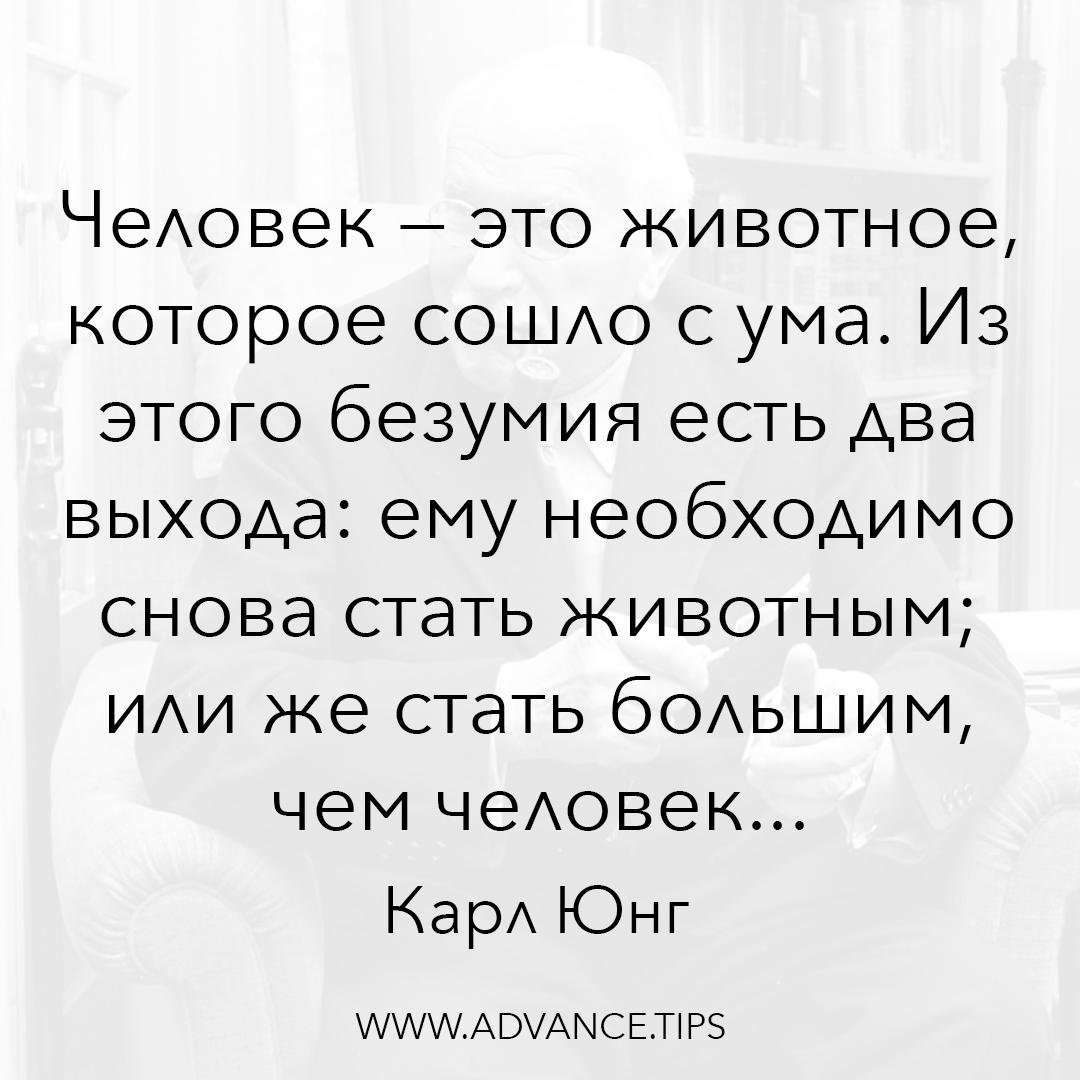 Человек - это животное, которое сошло с ума. Из этого безумия есть два выхода: ему необходимо снова стать животным; или же стать большим, чем человек. - Карл Юнг, 10 Мудрых Мыслей.