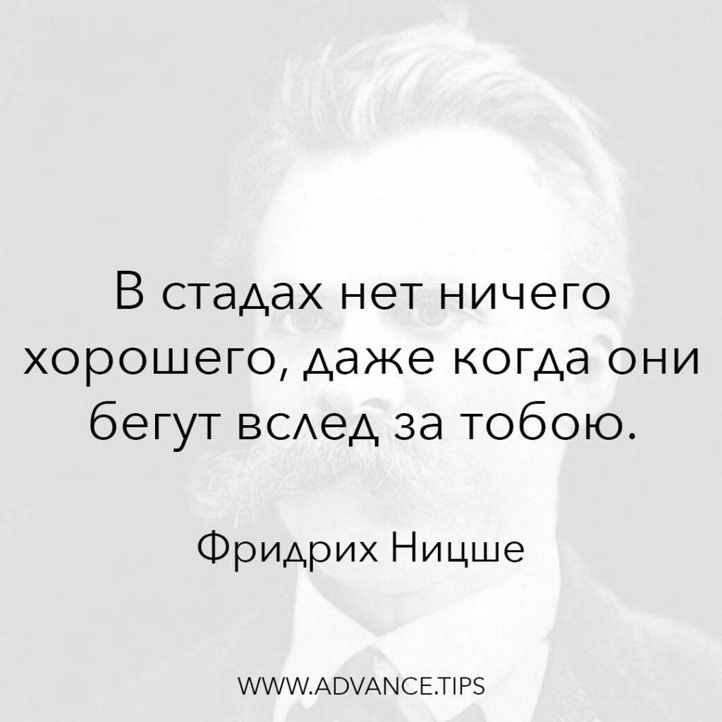 В стадах нет ничего хорошего, даже когда они бегут вслед за тобой. - Фридрих Ницше - 10 Мудрых Мыслей.