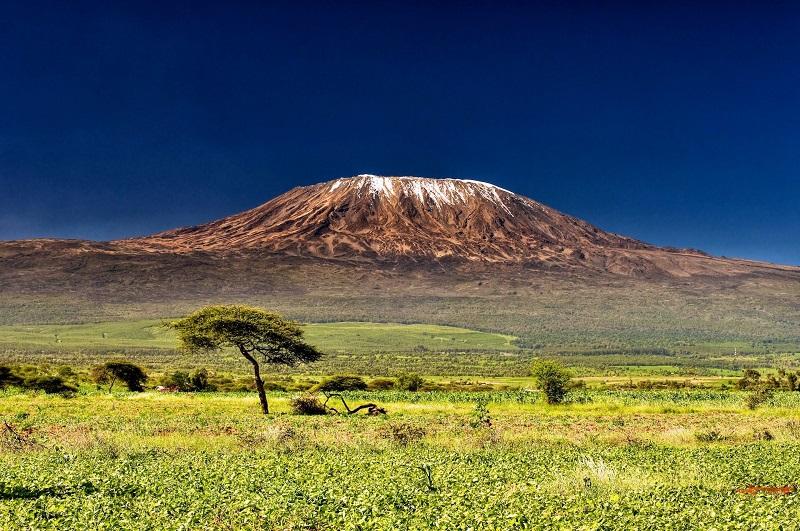 Восхождение отмороженного голландца Вима Хофа на Килиманджаро