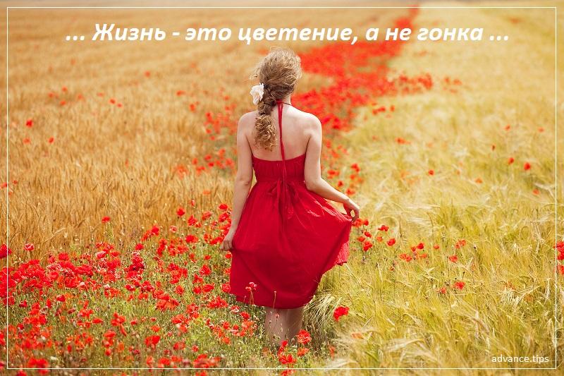 Жизнь это цветение, а не гонка