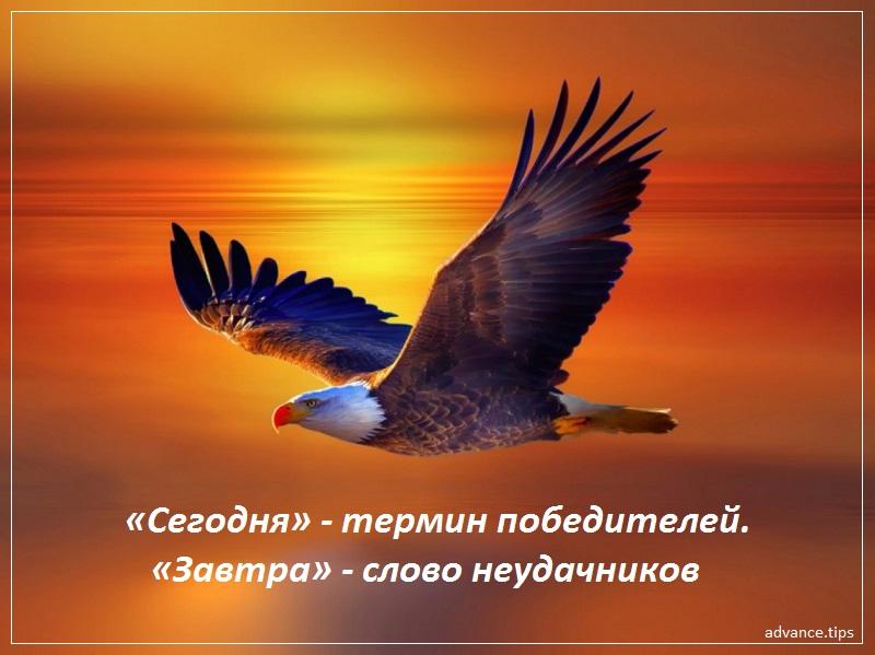 «Сегодня» — термин победителей. «Завтра» — слово неудачников
