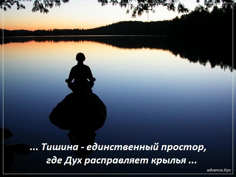 Тишина — единственный простор, где Дух расправляет крылья