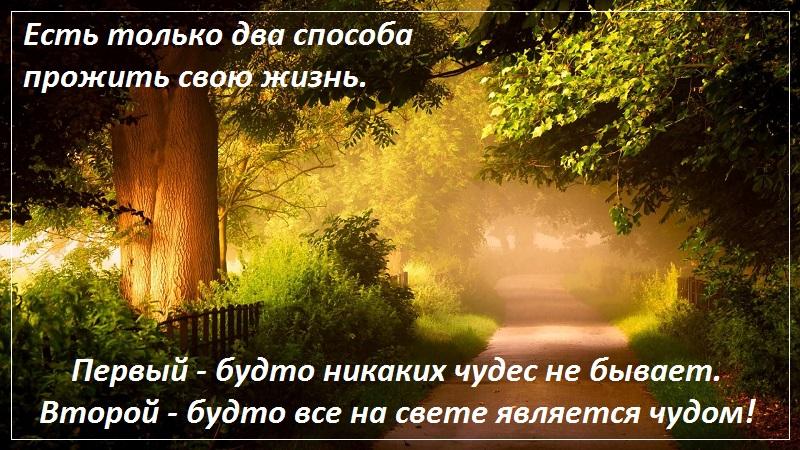 Есть только два способа прожить свою жизнь. Первый — так, будто никаких чудес не бывает. Второй — так, будто все на свете является чудом