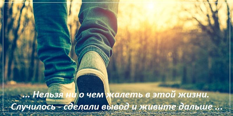 Нельзя ни о чем жалеть в этой жизни. Случилось — сделали вывод и живите дальше