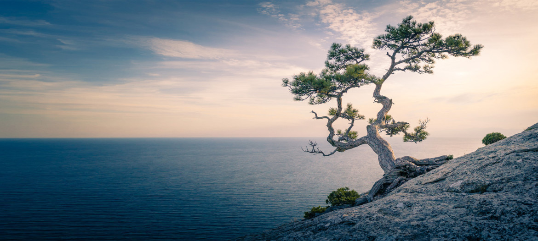 Медитация - ежедневная практика успешных и знаменитых - ваш ключ к раскрытию подлинного потенциала, успеху и счастью