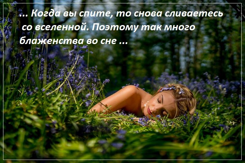 Когда вы спите, тогда вы снова сливаетесь со вселенной. Поэтому так много блаженства во сне