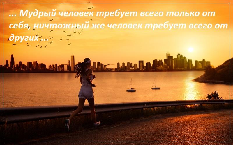 Мудрый человек требует всего только от себя, ничтожный же человек требует всего от других