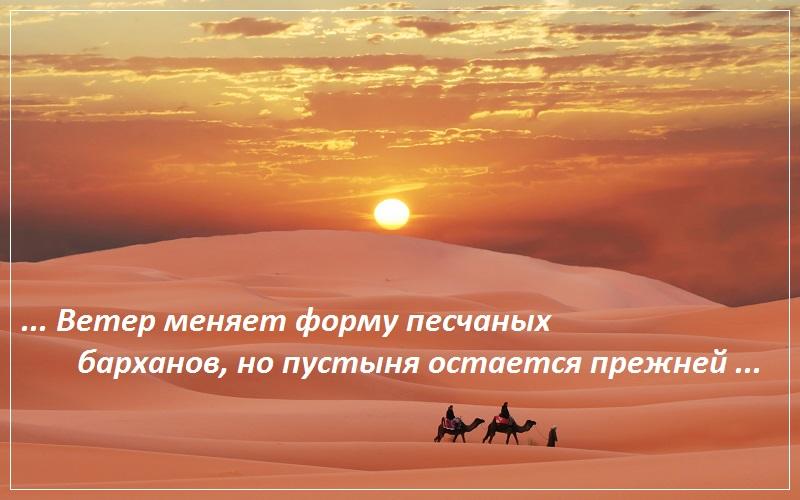 Ветер меняет форму песчаных барханов, но пустыня остается прежней