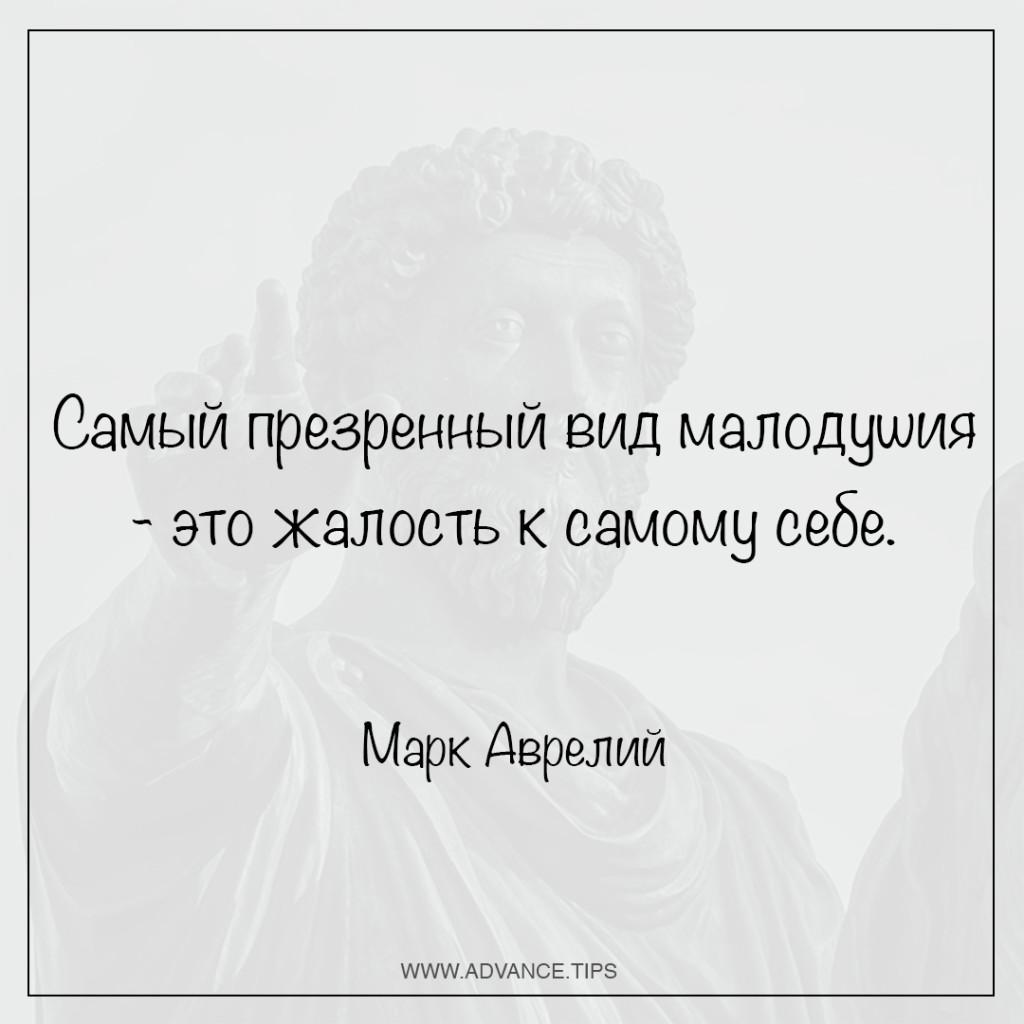 Самый презренный вид малодушия - это жалость к самому себе. - Марк Аврелий