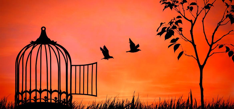 """Сенека, """"Нравственные Письма к Луцилию"""", Письмо 37, О Силе Разума, Приносящей Свободу..."""