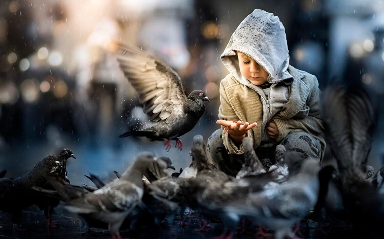 Добрая Притча про Кормление Птиц и Жизнь со Смыслом...
