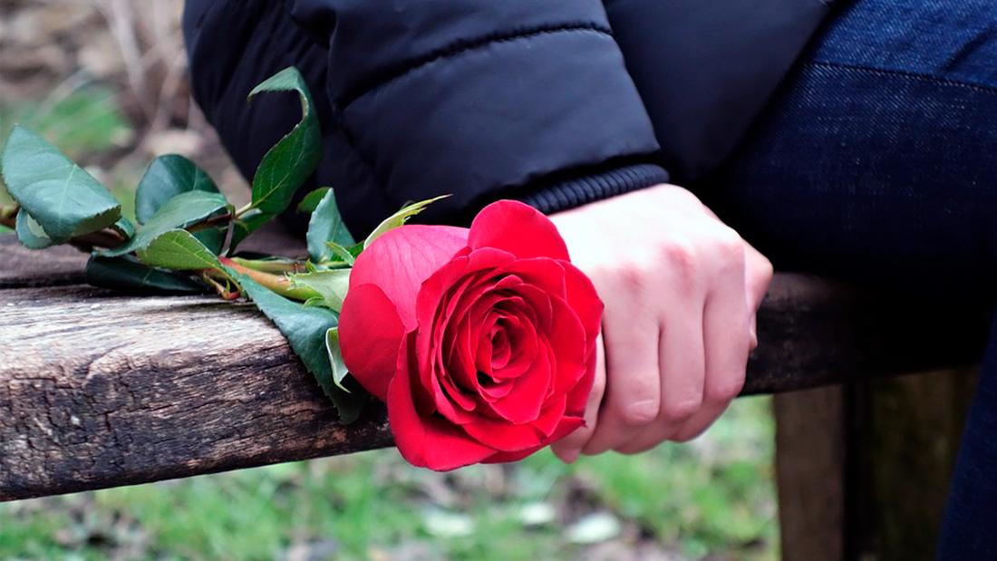 Мудрая Притча про Любовь, Интуицию и Счастье...