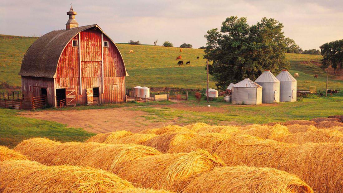 Мудрая Притча про Старого Фермера, Спокойствие Ума и Жизнь со Смыслом...