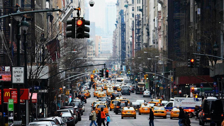 Мудрость Предков и Сверчок в Нью-Йорке...