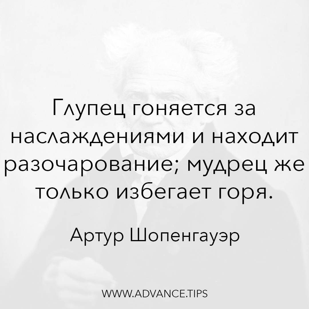 Глупец гоняется за наслаждениями и находит разочарование; мудрец же только избегает горя. - Артур Шопенгауэр, 10 Мудрых Мыслей