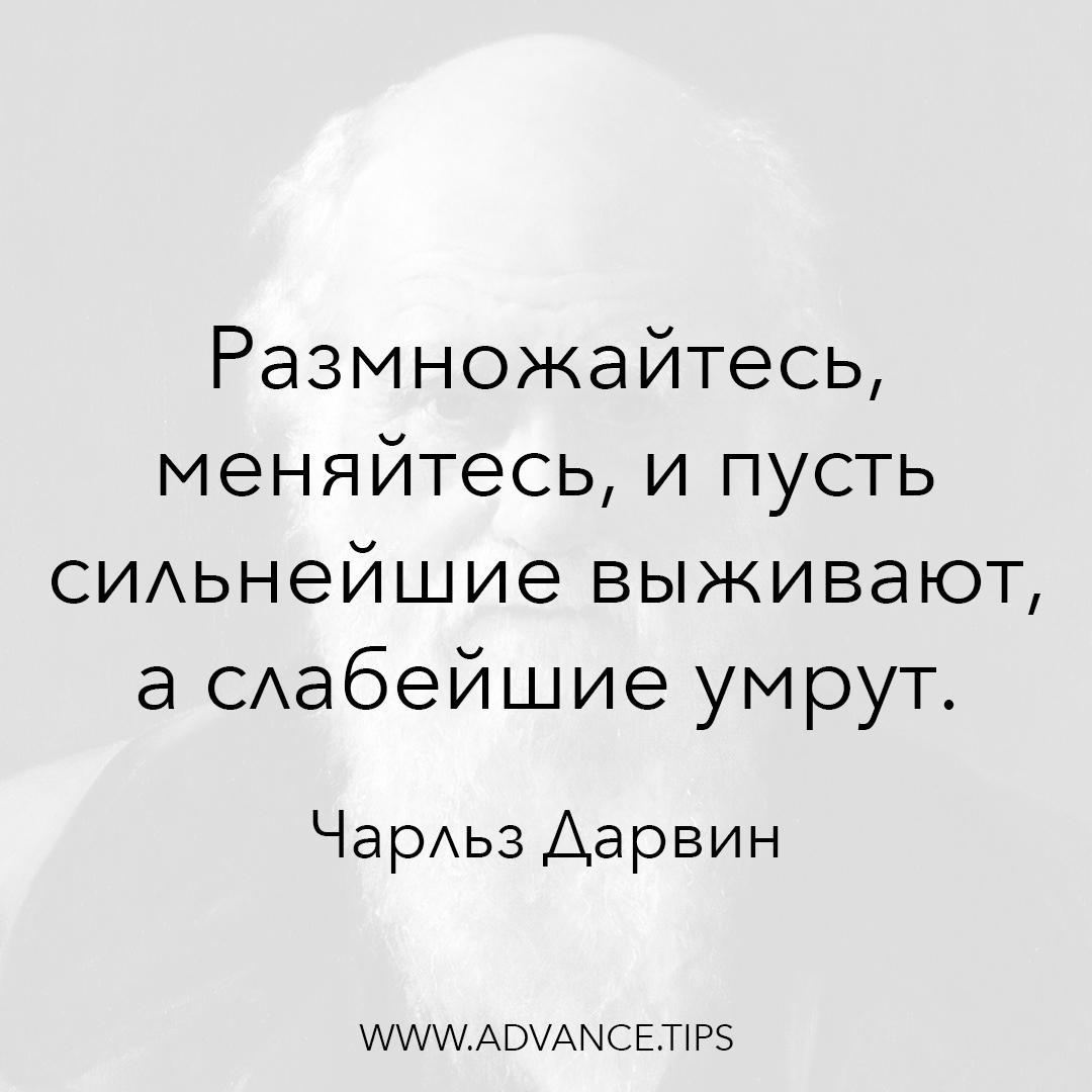 Размножайтесь, меняйтесь, и пусть сильнейшие выживают, а слабейшие умрут. - Чарльз Дарвин - 10 Мудрых Мыслей.